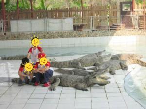 Kiddie Croc 1